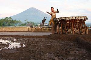 76617a Cestopis po Indonésii 2007