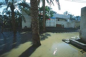 18730036a Omán a Spojené arabské emiráty 2007