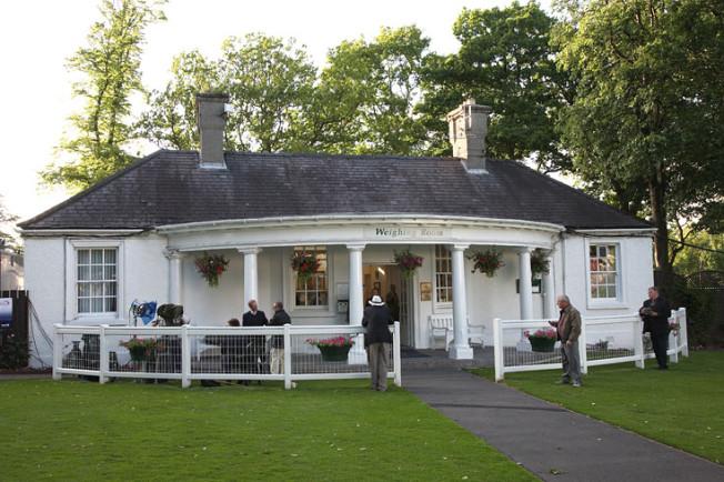 dostihy hamilton park skotsko scotland 11 Dostihy Hamilton Park