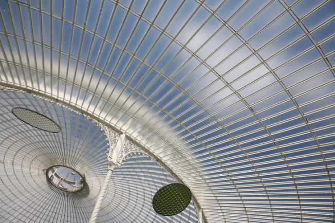 10 Botanická zahrada Glasgow