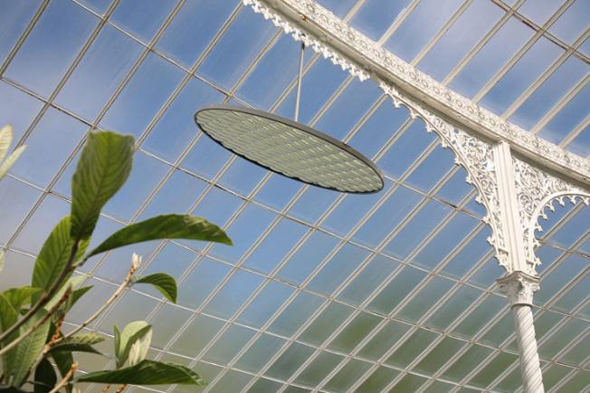 11 Botanická zahrada Glasgow