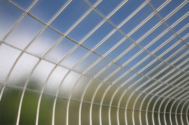 15 Botanická zahrada Glasgow