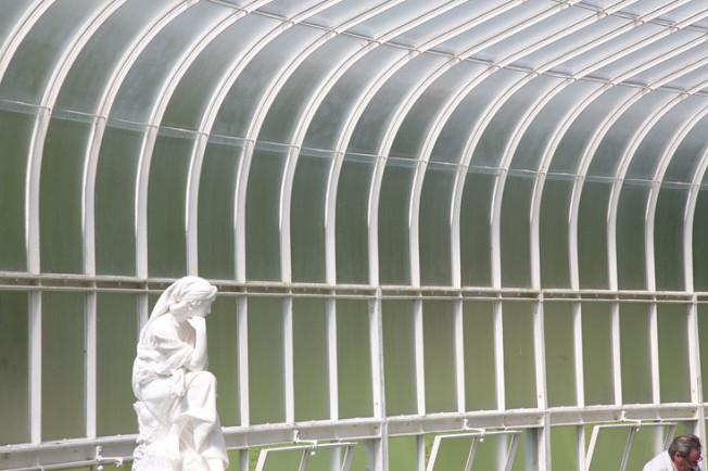 16 Botanická zahrada Glasgow