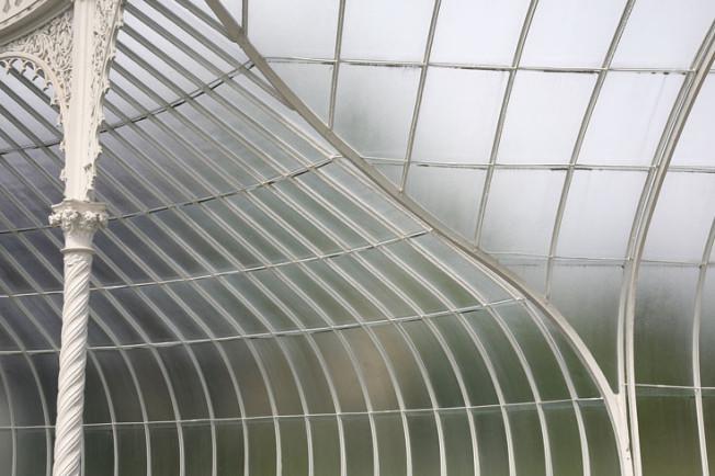 17 Botanická zahrada Glasgow