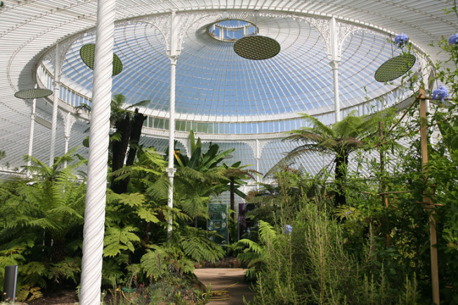 6 Botanická zahrada Glasgow