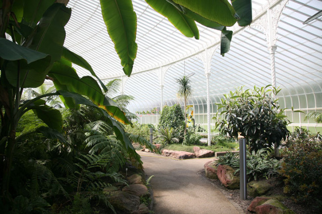 7 Botanická zahrada Glasgow