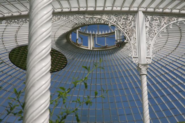 8 Botanická zahrada Glasgow