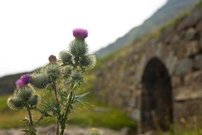 glencoe skotsko scotland 14 Glencoe, Skotsko