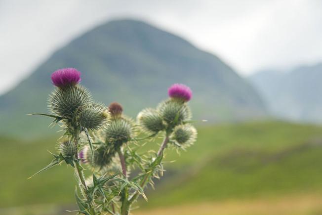 glencoe skotsko scotland 16 Glencoe, Skotsko