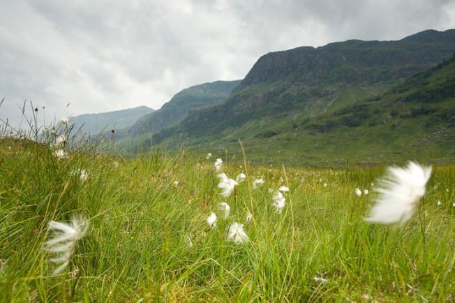glencoe skotsko scotland 29 Glencoe, Skotsko
