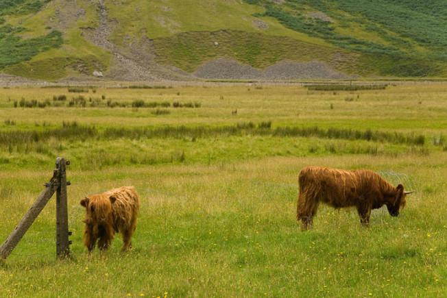 glencoe skotsko scotland 4 Glencoe, Skotsko