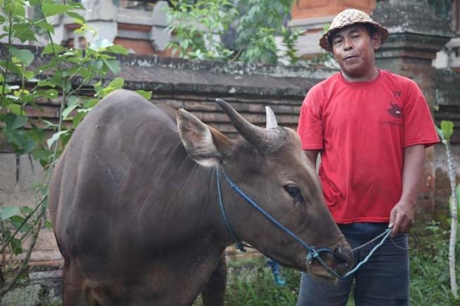 vsedni den v indonesii 11 Všední den v Indonésii