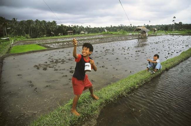 vsedni den v indonesii 44 Všední den v Indonésii
