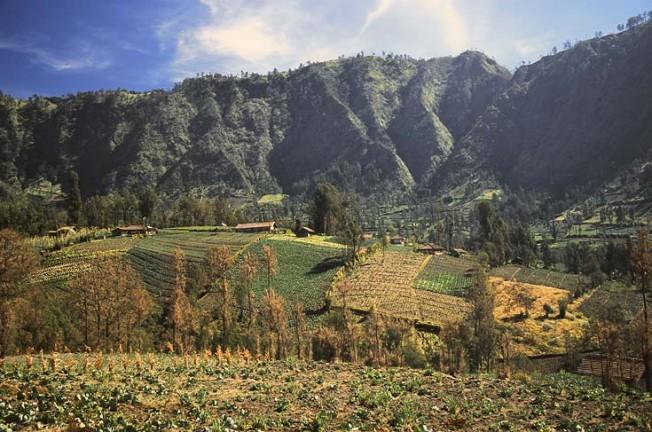 indonesie krajiny 47 Indonésie   krajiny