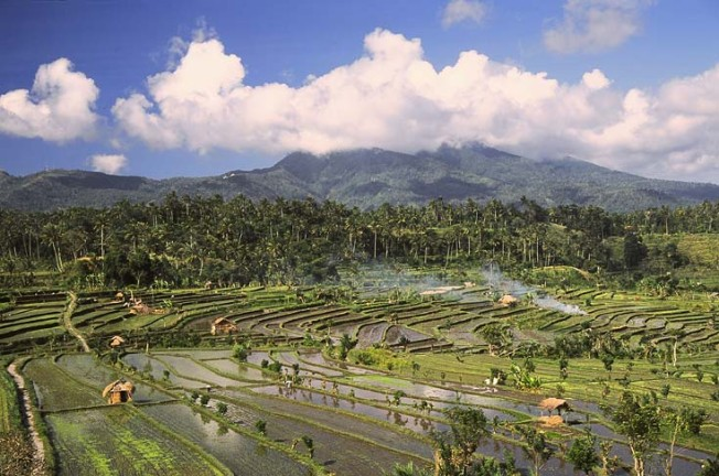 indonesie krajiny 7 Indonésie   krajiny