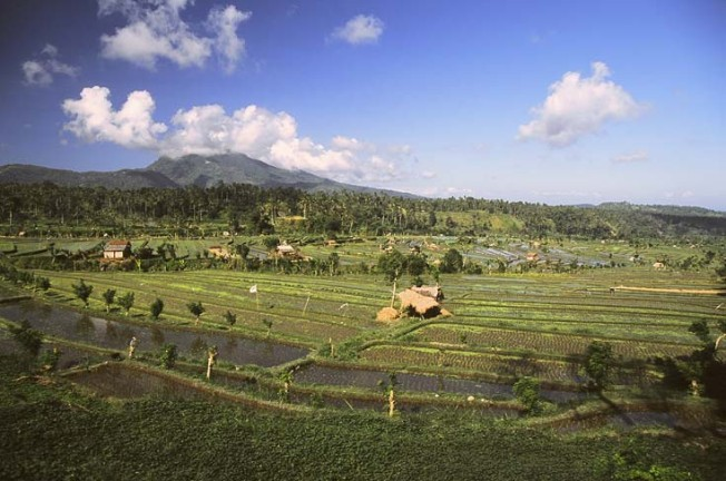 indonesie krajiny 8 Indonésie   krajiny