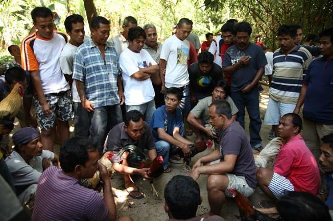 indonesie bali kultura zvyky 33 Kultura a zvyky Indonésie