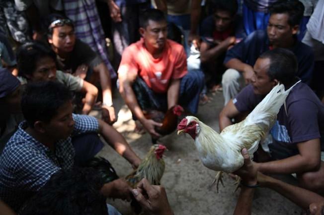 indonesie bali kultura zvyky 35 Kultura a zvyky Indonésie
