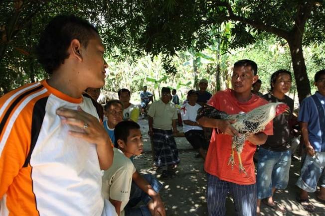 indonesie bali kultura zvyky 36 Kultura a zvyky Indonésie