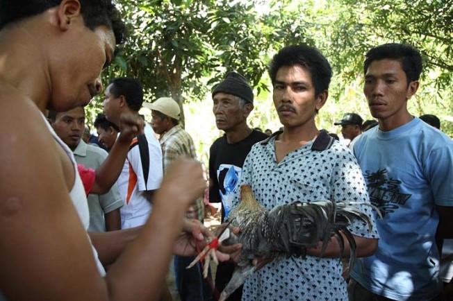 indonesie bali kultura zvyky 39 Kultura a zvyky Indonésie