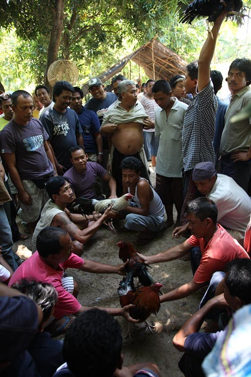 indonesie bali kultura zvyky 43 Kultura a zvyky Indonésie