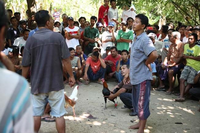 indonesie bali kultura zvyky 45 Kultura a zvyky Indonésie