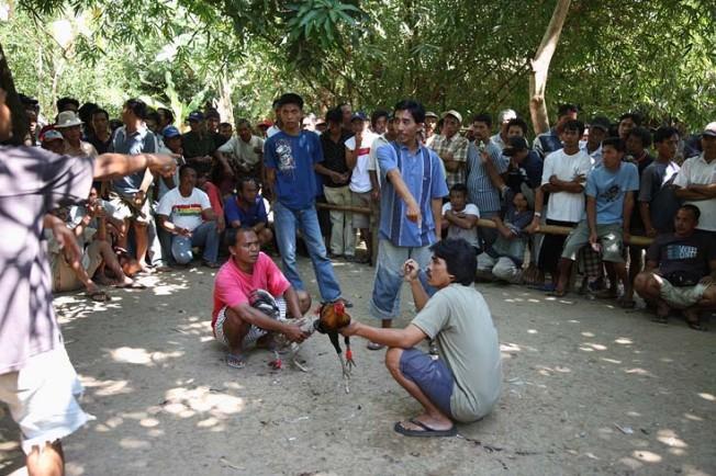 indonesie bali kultura zvyky 46 Kultura a zvyky Indonésie
