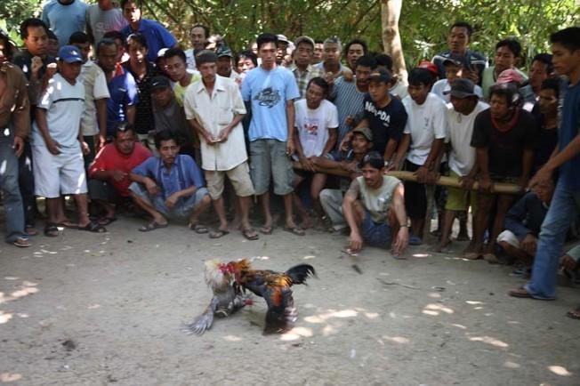 indonesie bali kultura zvyky 47 Kultura a zvyky Indonésie
