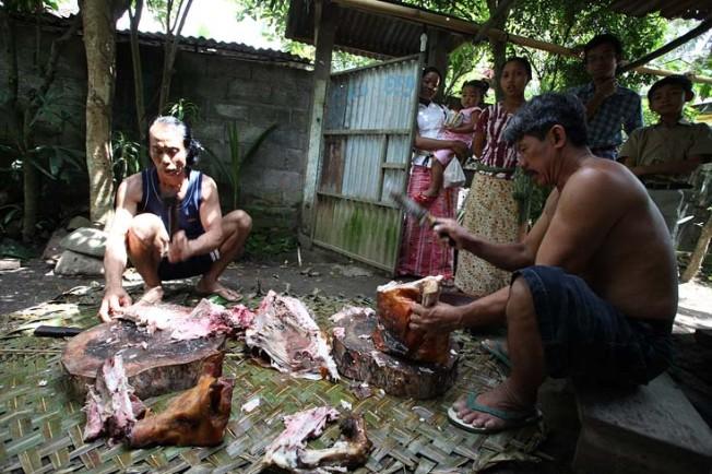 indonesie bali kultura zvyky 79 Kultura a zvyky Indonésie