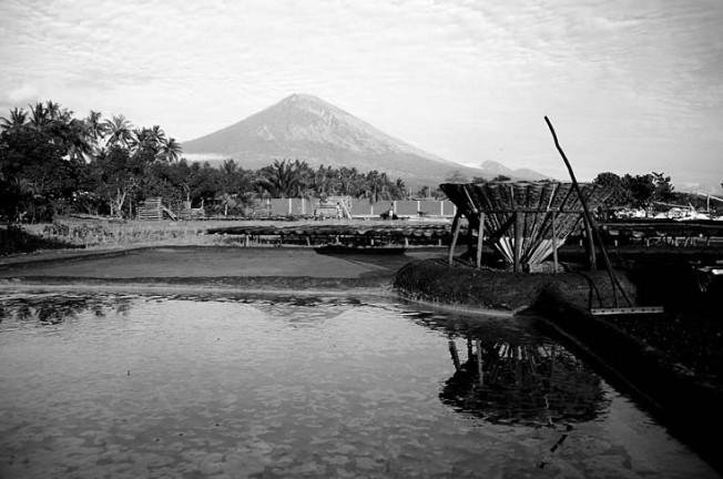 indonesie mizejici umeni 17 Mizející umění
