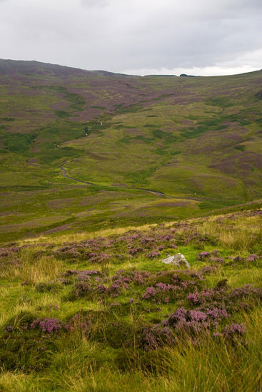 loch lomond skotsko scotland 20 Loch Lomond a The Trossachs NP,  Skotsko