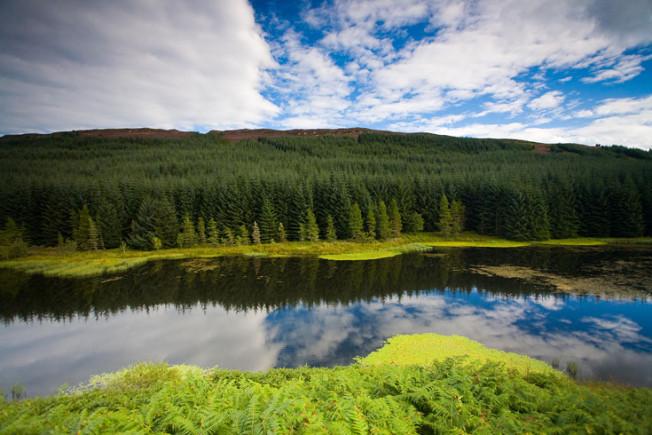 loch lomond skotsko scotland 35 Loch Lomond a The Trossachs NP,  Skotsko