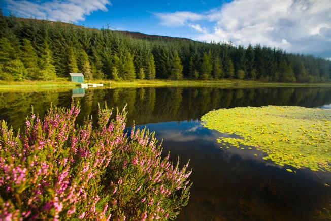 loch lomond skotsko scotland 40 Loch Lomond a The Trossachs NP,  Skotsko