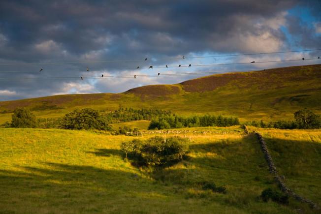 loch lomond skotsko scotland 44 Loch Lomond a The Trossachs NP,  Skotsko
