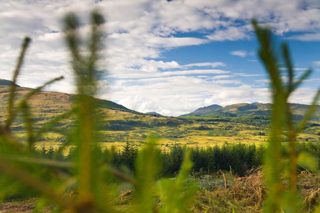 loch lomond skotsko scotland 47 Loch Lomond a The Trossachs NP,  Skotsko
