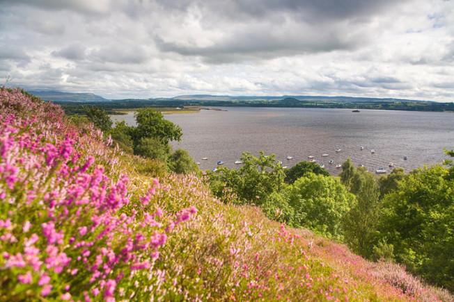 loch lomond skotsko scotland 5 Loch Lomond a The Trossachs NP,  Skotsko