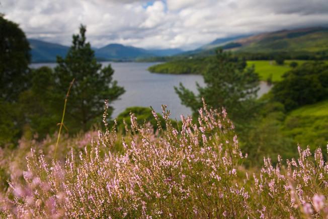 loch lomond skotsko scotland 6 Loch Lomond a The Trossachs NP,  Skotsko