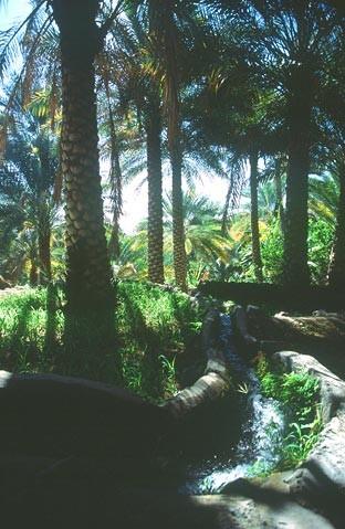 oman krajiny landscapes 11 Omán   krajiny