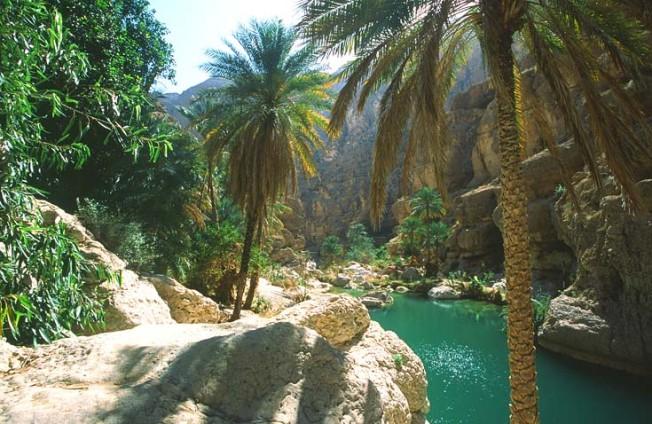oman krajiny landscapes 13 Omán   krajiny