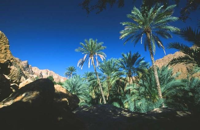 oman krajiny landscapes 14 Omán   krajiny