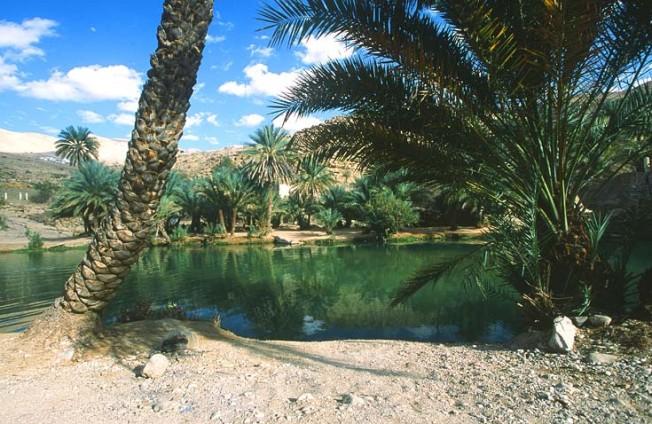 oman krajiny landscapes 21 Omán   krajiny