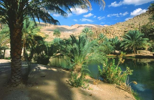 oman krajiny landscapes 22 Omán   krajiny