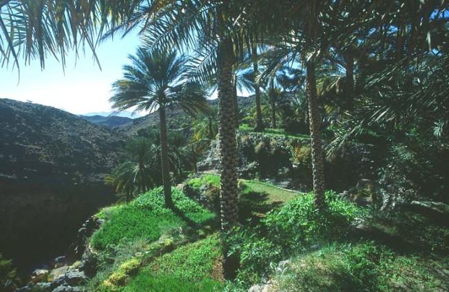 oman krajiny landscapes 5 Omán   krajiny