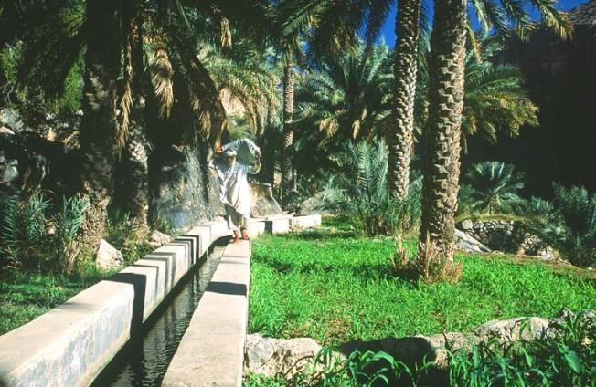 oman krajiny landscapes 8 Omán   krajiny