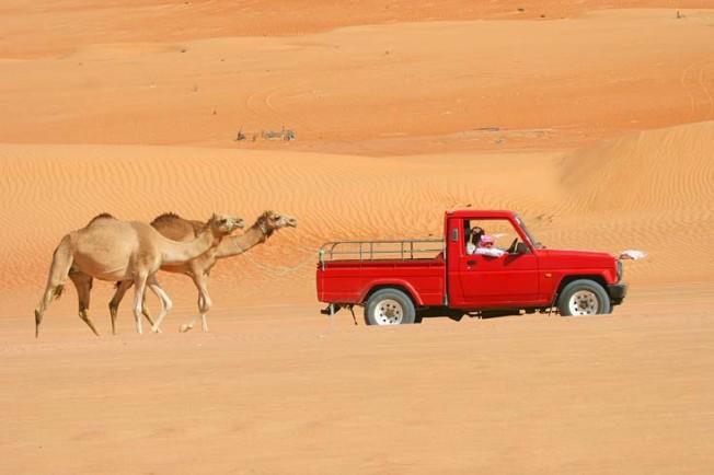 oman poust desert 5 Omán   poušť