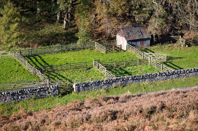 pentland hills skotsko scotland 24 Pentland hills, Skotsko