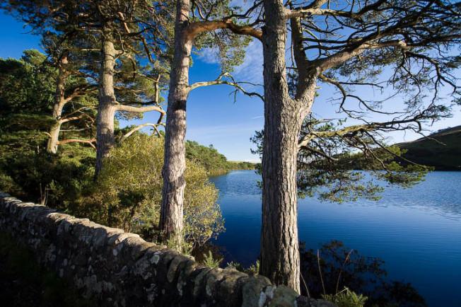 pentland hills skotsko scotland 28 Pentland hills, Skotsko