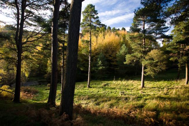 pentland hills skotsko scotland 31 Pentland hills, Skotsko